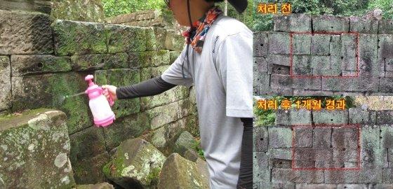 캄보디아 현장 관계자가 야외 석조문화재에 '스톤키퍼'를 분무하고 있다. /사진=문화재청