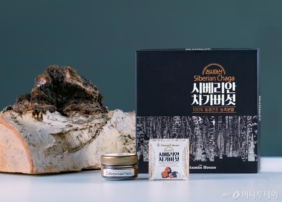 시베리안 차가버섯 제품. /사진제공=비타민하우스
