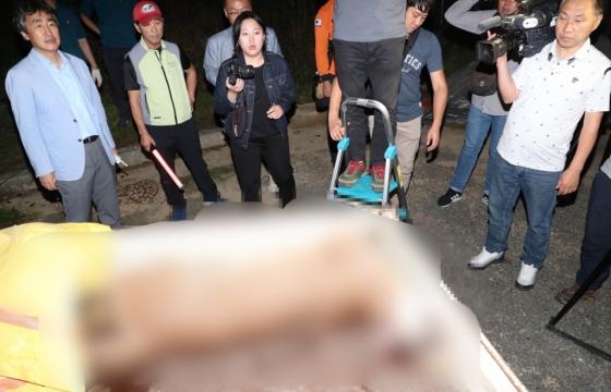 18일 오후 대전시 중구 사정동 대전동물원에서 탈출 4시간30여분 만에 엽사에 의해 사살된 퓨마가 동물원 내 동물병원 구조차량으로 옮겨지고 있다. /사진=뉴스1
