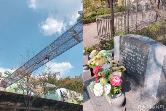 지난달 30일 찾은 대전의 한 동물원의 원숭이가 공중에 좁게 만들어진 통로로 달리고 있는 모습(왼쪽)과 해당 동물원에서 생을 마감한 동물들을 위한 위령비의 모습. /사진= 유승목 기자