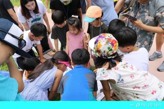 청량산 및 남한산성 숲에서 찾는 갈등과 소통 탐방(송파위례도서관). /사진제공=한국도서관협회
