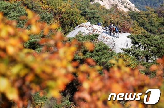 [사진]북한산 물들이는 가을단풍