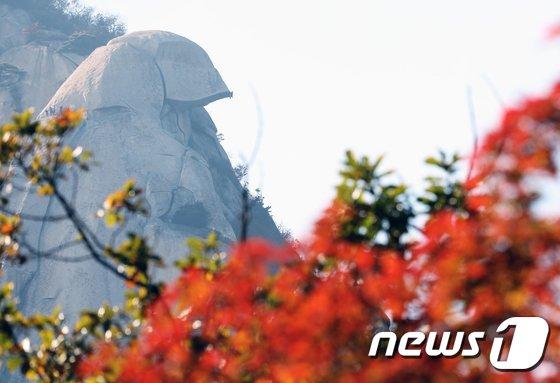 [사진]단풍과 암벽 등반