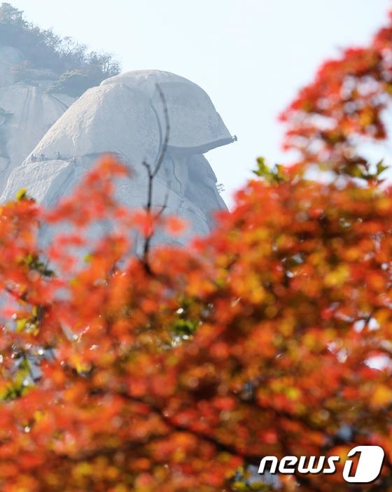 [사진]'가을산행 안전이 필수'