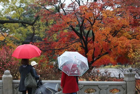 8일 오후 서울 종로구 창덕궁에서 우산을 쓴 시민들이 단풍 구경을 하고 있다. /사진=뉴스1
