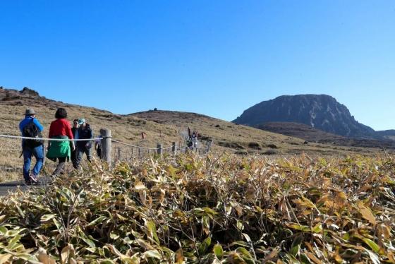 맑은 날씨를 보인 10일 제주 한라산 영실코스 탐방로에 탐방객들이 찾아와 가을 정취를 만끽하고 있다./사진=뉴시스