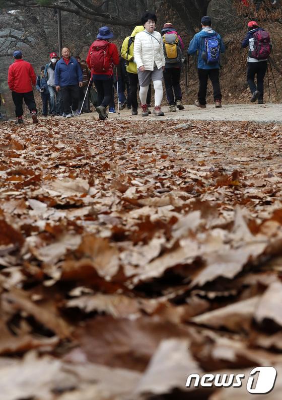 [사진]'낙엽을 밟으며'