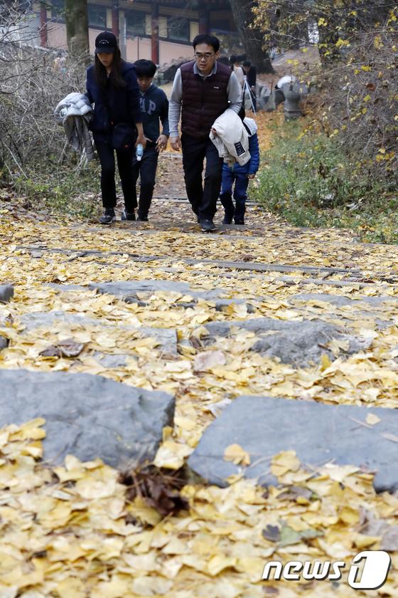 [사진]'낙엽 가득한 산길 걸으며'