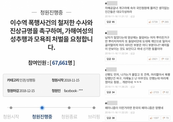 /사진=청와대 국민청원 페이지, 포털 사이트 댓글 캡처