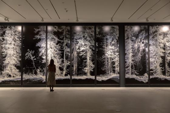 콰욜라의 작품 '리메인즈'(Remains) 시리즈. 고정밀 레이저 스캐너로 포착한 자연경관을 디지털로 변환해 대형용지에 프린트했다./사진제공=파라다이스 아트 스페이스