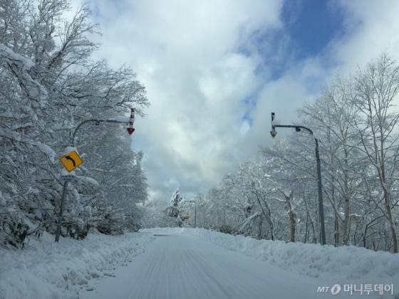 기자가 2017년 11월 말 방문한 홋카이도 노보리베츠~토야호 방향의 어느 국도. 눈이 내리지 않으면 어쩔까 걱정했던 내 맘은 기우였다. 렌트카로 이동하다가 '주행 금지' 표지판이 꽂힌 도로가 많아 정말 '죽을 뻔' 했다.
