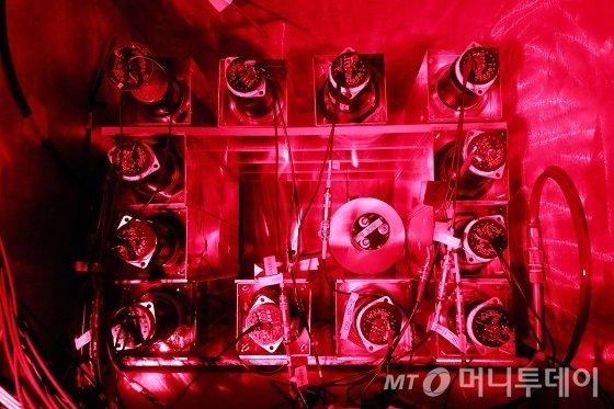국내 언론사 최초로 검출기 모듈 내부에 장착된 12개의 캡슐화된 8.7kg의 요오드화나트륨(Nal) 결정과 1개의 요오드화세슘(Csl) 결정을 촬영했다. 백색광은 검출기에 영향을 줄 수 있어 작업 시 붉은등만 비상용으로 켠다. 검출기는 평소 완전한 암흑 속에서만 작동한다./사진=양양(강원) 임성균 기자