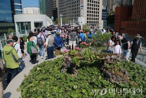 47년 만에 찻길에서 보행길로 탈바꿈한 서울역 고가도로  '서울로 7017'을 찾은 시민들이 즐거운 시간을 보내고 있다. /사진=머니투데이 사진DB