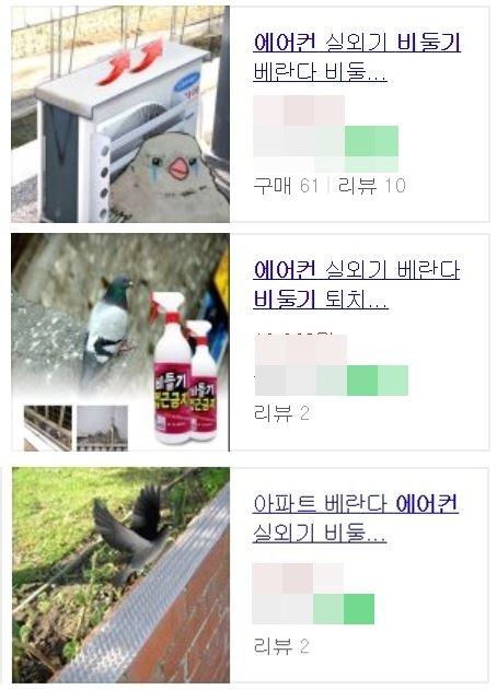 온라인에서 판매 중인 비둘기 퇴치 관련 상품들.