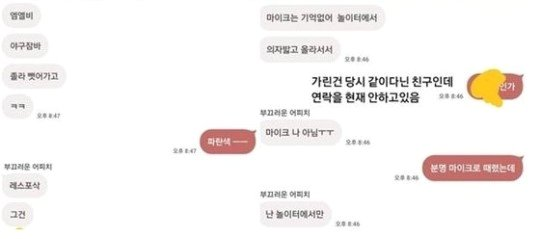 효린에게 학교폭력을 당했다고 주장하는 A씨와 B씨의 카카오톡 대화 내용/사진=온라인 커뮤니티