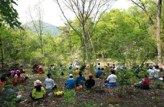 충북 충주 '깊은산속 옹달샘'에서 관광객들이 숲속 명상을 즐기는 모습. /사진=한국관광공사