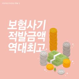 보험사기 적발금액 역대최고