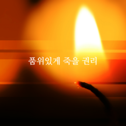 품위있게 죽을 권리