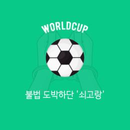 월드컵, 불법 도박하단 '쇠고랑'