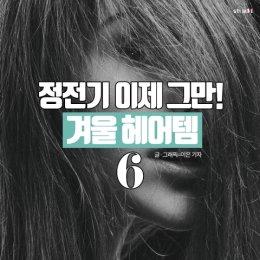 """""""정전기 NO!""""…머릿결 다스리는 '헤어템' 6"""