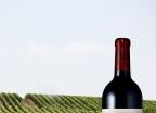 이건희 회장의 와인 '원형 탑 위의 사자'
