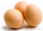 """[알랴ZOOM]""""노른자는 먹지 마?"""" 계란, 상식과 오해"""