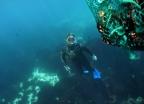 제주 해녀문화, 유네스코 등재… 다른 유네스코 유산은?