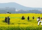 [사진]'이제 봄이로구나'