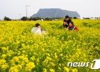 [사진]'서귀포의 봄 이야기'