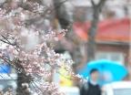 [내일 날씨]오전에 비소식…우산 챙기세요