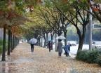 [오늘 날씨] 전국 곳곳 비 조금… 미세먼지 '나쁨'