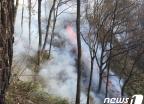 산청 염소 축사 화재 번져 지리산 산불… 5㏊ 태워