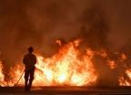 미국 캘리포니아 산불 나흘째…서울 면적 80% 태워
