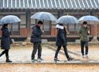 [내일 날씨]전국에 내리는 눈·비…밤부터 기온 뚝