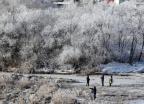 [포토is]한파가 만든 소양강 상고대…사진작가 북적