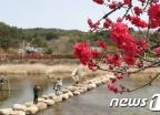 [내일 날씨]맑지만 큰 일교차…서울 아침 5도 '쌀쌀'