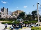 [내일 날씨]전국 '화창'…수도권·충청 오전 미세먼지 '나쁨'