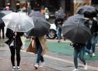 [사진]강풍과 함께 온 봄비