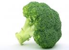 브로콜리, 치매 막는다… 유발 단백질 제거