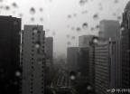 [오늘 날씨]전국 하늘 '흐림'…곳곳 소나기