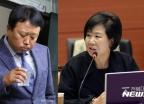 """손혜원 의원 """"AG 엔트리 회의록은 가짜""""… 오류 지적"""