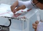 안산 반월공단서 붉은불개미 1000여 마리 발견