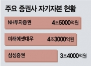 [단독]'3조-5조-7조?' 증권 사장단 초대형IB기준 신경전