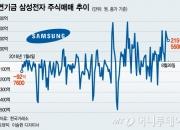 '삼성電 매입'연기금 뒤엔…국민연금 '약속대로 운용'주문