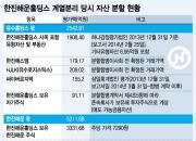 [뉴스뒷이야기]비적격 인적분할이 최은영 회장에게 준 이익