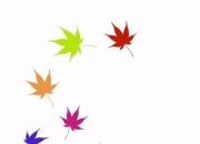 [보일샘의 포스트카드] 소풍의 시간, 단풍의 시간