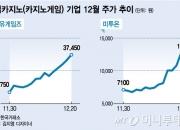 카지노보다 '카지노게임株'…성장성에 명암