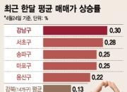 """마포·용산, 매매가 수직상승…""""강남 안 부럽네~"""""""