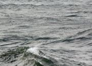 [친절한판례氏] 내무반 동료 헹가래치려다 바다에 익사…누구 책임?