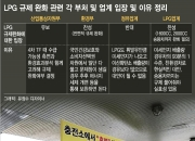 'LPG 아반떼·쏘나타' 타게 될까… 허용범위가 관건